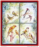 EGYPT 1994 BIRDS SC#1551 MNH PARROTS (E15) - Égypte