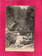 38 Isère, Sassenage, Passerelle Sur Le Furon, Animée, (A. V., L. P.) - Sassenage