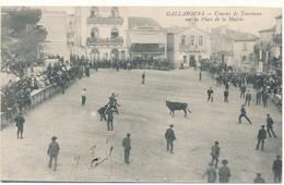 GALLARGUES -  Course De Taureaux, Place De La Mairie - Gallargues-le-Montueux