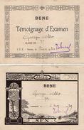 VP11.396 - VANNES 1939 - 40 - Ecole - Témoignage D'Examen - Elève George ALLO - Diplômes & Bulletins Scolaires
