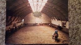 CPSM CHEVAL CHEVAUX POMPADOUR CORREZE CLUB MEDITERRANEE LE MANEGE LUTTEUR B 1981 - Pferde
