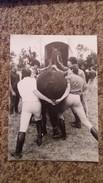 CPM CHEVAL PLACE DANS REMORQUE PORTAIL MANCHE SERIE DE PEGASE EN LICORNE J FAUJOUR 1986 - Chevaux