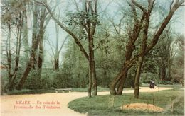 6 CPA Meaux - 5 - 99 Karten