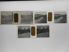 LOT DE 3 PHOTO STEREO PLAQUE DE VERRE FONTAINEBLEAU GORGES DE FRANCHARD - Photos Stéréoscopiques