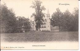 WOMMELGHEM: Château De Selsaete (hoelen) - Wommelgem