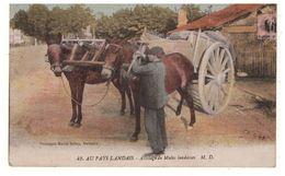 40 - AU PAYS LANDAIS . ATTELAGE DE MULES LANDAISES - Réf. N°5309 - - France