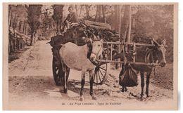 40 - AU PAYS LANDAIS . TYPE DE MULETIER - Réf. N°5313 - - Frankrijk