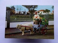 Pc 1960s PORTUGAL AZORES  AÇORES S. MIGUEL  ST. MICHAEL SHEEP CART  Z1 - Postcards