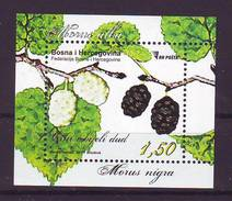BiH Bosnia 2017 Y Flora Plants Block MNH - Bosnie-Herzegovine
