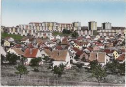 Bg - Cpsm Grand Format MONTBELIARD - Vue Générale De La Chiffogne - Montbéliard