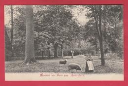 Anderlues - Maison Au Bois ... Personnages ... Moutons ( Voir Verso ) - Anderlues