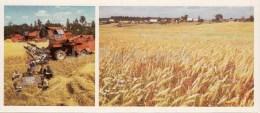 Crop Harvest - Harvester - Novgorod Region - 1985 - Russia USSR - Unused - Rusia