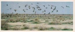 Crane-land - Kopet Dagh Nature Reserve - 1985 - Turkmenistan USSR - Unused - Turkménistan