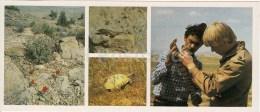 Lizards And Turtles - Caspian Monitor - Kopet Dagh Nature Reserve - 1985 - Turkmenistan USSR - Unused - Turkménistan