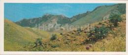 Valley - Kopet Dagh Nature Reserve - 1985 - Turkmenistan USSR - Unused - Turkménistan
