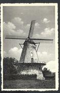 +++ CPA - BOECHOUT - Molen - Moulin - CPSM   // - Boechout