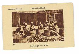 BON -POINT CHOCOLAT FAVERGER SAINT-ETIENNE SERIE NOS COLONIES MADAGASCAR LE TRIAGE DU CACAO - Old Paper
