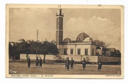 SIDI BEL ABBES - ( ORAN ) LA MOSQUE  - NV FP - Algerien