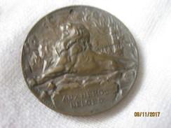 Belgique: Médaille 1914 - Belgique