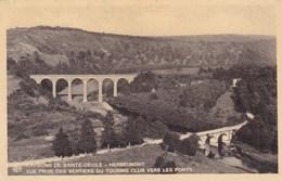 Environs De Sainte Cécile, Herbeumont, Vue Prise Des Sentiers Du Touring Club Vers Les Ponts (pk39928) - Florenville