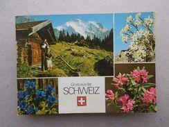 Postcard 1960years Gruss Aus SCHWEIZ SWITZERLAND SUISSE Flowers Botanic Music Z1 - Postcards