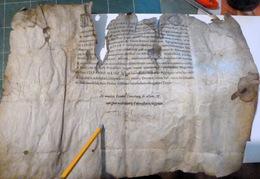 DIPLOME DU BACCALAUREAT ACCORDE PAR LE RECTEUR DE VALENCE  PARCHEMIN ANCIEN DE 1683 AVEC DES MANQUES - Diplomi E Pagelle