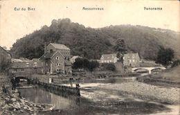 Nessonvaux - Cul Du Biez - Panorama (animée, 1910) - Trooz