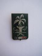 Pin's Daguet Guerre Du Golfe 1991 - Army