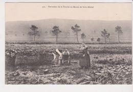 26311 Extraction Tourbe Au Marais De Saint Michel -332 Joncour Brasparts - France