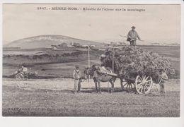 26312 - 29 Menez Hom-- Recolte De L' Ajonc -edi E.H N°2507-cliché Le Doaré - Brasparts Attelage Cheval Charrette - Autres Communes