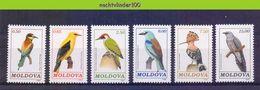 Mza045 FAUNA VOGELS HOP WOODPECKER BEE-EATER BIRDS VÖGEL AVES OISEAUX MOLDOVA 1992 PF/MNH # - Collections, Lots & Series
