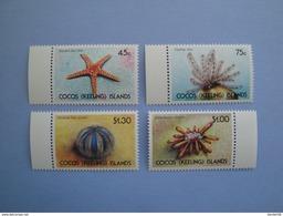 1991  Cocos Islands Yvert 233/6 ** Faune Marine Scott 237/40  Michel 245/8 Echinodermes - Cocos (Keeling) Islands