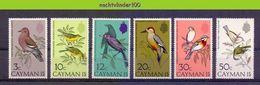 Mza058 FAUNA VOGELS SPECHT DUIF WOODPECKER DOVE BIRDS VÖGEL AVES OISEAUX CAYMAN ISLANDS 1974 PF/MNH - Verzamelingen, Voorwerpen & Reeksen