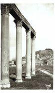 Riez Vestiges Romains - N° 1466 - Altri Comuni