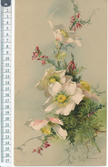 Catharina KLEIN - Chromo Format 15,5 X 27 Cm Sur Carton - Fleurs - Beaux Arts, Peinture - Vieux Papiers