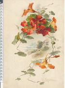 Catharina KLEIN - Chromo Format 20 X 30 Cm Sur Carton -  Fleurs, Capucines Et Paysage - Beaux Arts, Peinture - Unclassified