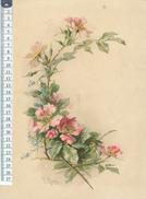 Catharina KLEIN - Chromo Format 22 X 30 Cm Sur Carton -  Fleurs - Beaux Arts, Peinture - Unclassified