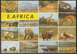 Kenia  East Afrika - Wildlife - Animals - 2x Nice Stamps - Kenia