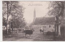 26335 Chapelle Bretonne Saint Roch, Environs Plomelin -3145 ?  Vache Bretonne - France