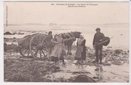 26336 Environs Portsall Greve Treompan Recolte Goemon -910 Villard -charrette Cheval Pecheur - France
