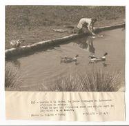 MILITARIA - WW2 - GUERRE 39 - 45 -- PROPAGANDE VICHY - Photo R. BRAJOU - VICHY -- Pas Connaisseur En Photos - Ph.5 - Guerra, Militares