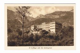 PORLEZZA (CO):  COLLEGIO  ARCIVESCOVILE  S. AMBROGIO  -  VISTO  DA  MEZZOGIORNO  -  FP - Schools