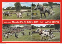 HIPPISME - HARAS - CHEVAUX - PERCHERONS - Congrès Mondial Percheron 1989 Le Haras Du Pin - Courses De Trait-Tract - CPM - Chevaux