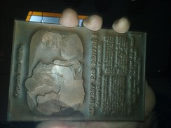 Plaque D'imprimerie - Assurance Vie - Pompe Funebre  - Plomb & Cuivre - Vieux Papiers