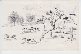 Horse Riding, Equitation Used - Cartes Postales