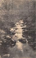 Environs De VRESSE - Vue Du Ruisseau Du Petit Fays (La Cascadelle) - Vresse-sur-Semois