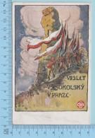 Spartakiade 1920 Sedmy Slet Vseskolsky V Praze (15)  - Post Card Carte Postale - Tchéquie