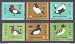 Poland 1985 Polen Mi 2998-3003 Wild Ducks / Jagdbare Wildtiere **/MNH - Eenden