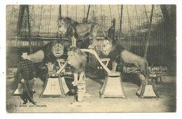 CIRQUE METIER DOMPTEUR LIONS SPECTACLE EDITEUR MICHEL GRENOBLE - Cirque