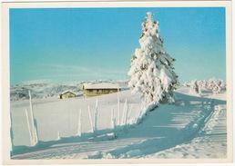 Gudbrandsdal - Vinter I Norge - (Winter Wonder Land)  - (Norge/Norway) - Noorwegen